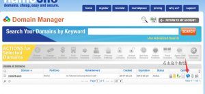Namesilo上买的域名解析全教程,手把手教你如何解析成功,附详细截图