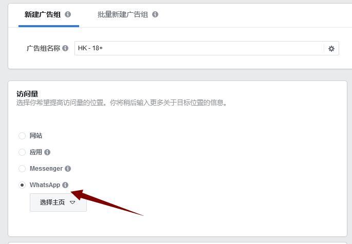 Facebook设置:选择WhatsAPP的访问量