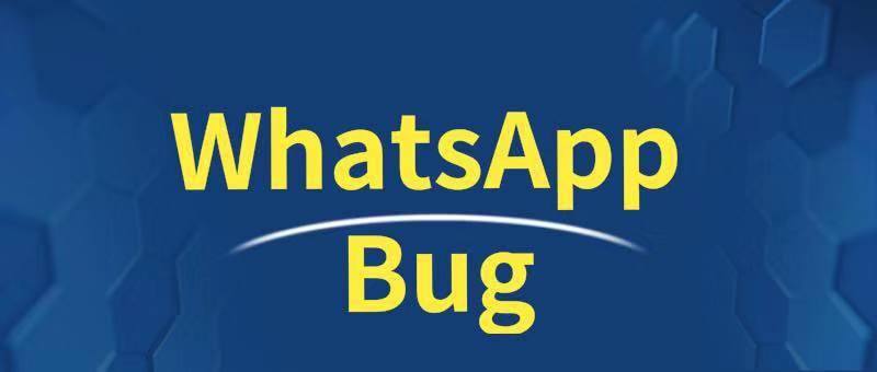 苹果手机WhatsAPP无法连接的解决方法